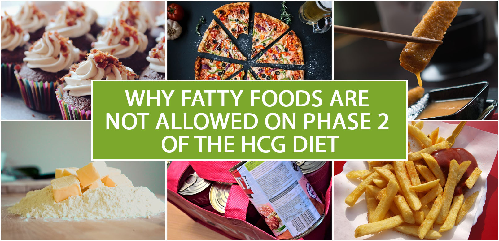 WHY FATTY FOODS ARE NOT ALLOWED ON PHASE 2 OF THE HCG DIET