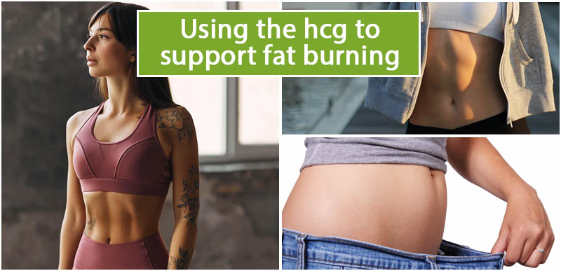 Using the hcg to support fat burning