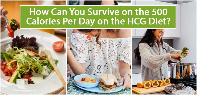 How Can You Survive on the 500 Calories Per Day on the HCG Diet